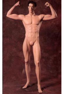 Weightlifter mannequin for sale 3 - Male, Standing Mannequin Body